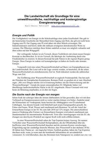 Aufsatz in deutsch hausarbeit jura mlu halle