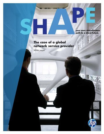 The case of a global network service provider (US English)