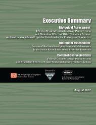 August 2007 Biological Assessment Executive ... - Mediate.com
