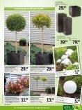 sommer - Gartencenter Fahr Dornstetten - Seite 7