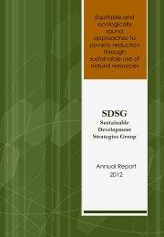 2012 Annual Report - SDSG