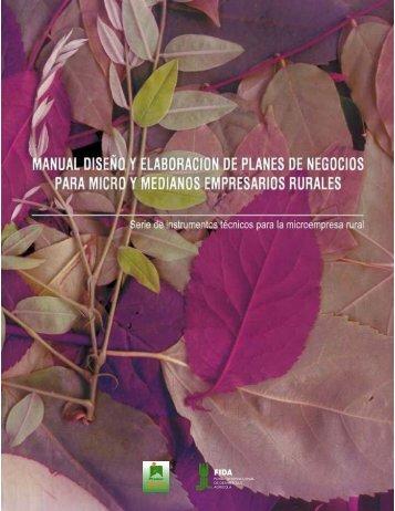 Manual Diseño y Elaboración de Planes de Negocios para Micro y ...