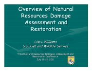 Overview of Natural Resources Damage Assessment and Restoration