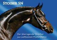 Stoiber SN - Gestuet Sandra Neff