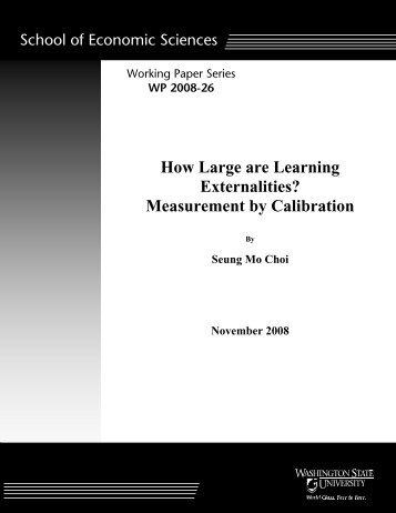 How Large are Learning Externalities? - Washington State University