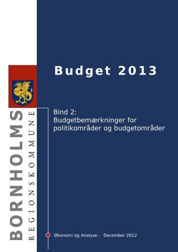 Budget 2013 - Bornholms Regionskommune