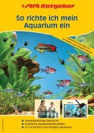 So richte ich mein Aquarium ein - Aquaristik-Shop