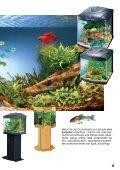 So richte ich mein Aquarium ein - Aquaristik-Shop - Seite 3