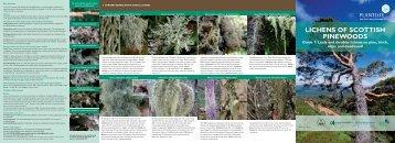 LICHENS OF SCOTTISH PINEWOODS - Plantlife