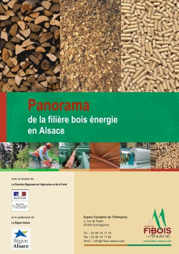 panorama filière bois alsace.pdf