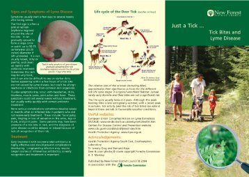Tick Leaflet - New Forest District Council