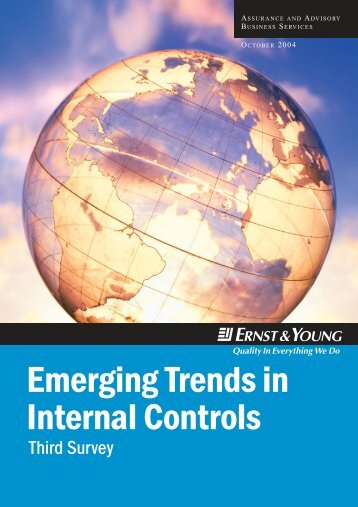 Emerging Trends in Internal Controls