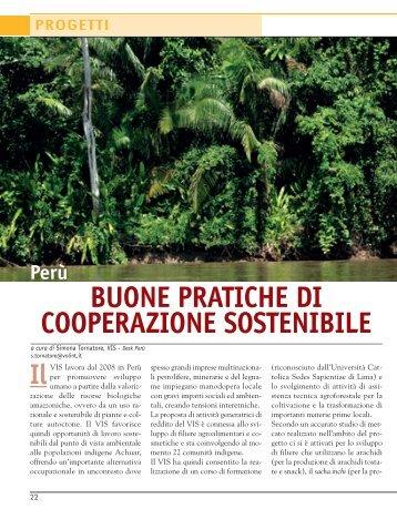 Buone pratiche di cooperazione sostenibile - VIS - Volontariato ...