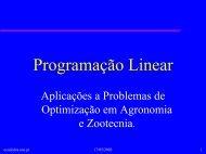 Programação Linear Aplicações a Problemas de Optimização em