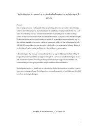 Vejledning om kommunal og regional udbudsstrategi og ... - BDO