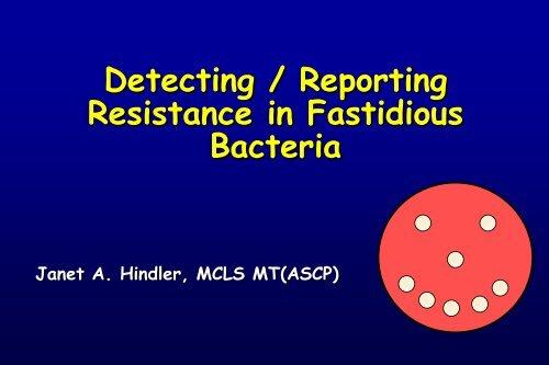 Detecting Reporting Resistance In Fastidious Bacteria Swacm