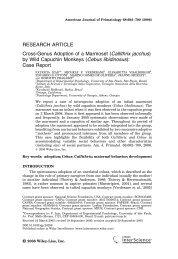 Cross-genus adoption of a marmoset - Instituto de Psicologia da USP