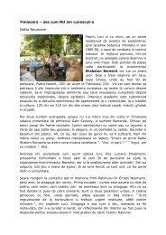 Timisoara – asa cum NU am cunoscut-o Getta ... - BJT2006.org