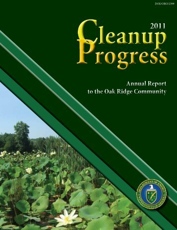 FY 2011 Cleanup Progress Report - DOE Oak Ridge Operations