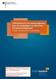 Teilhaben - Bericht 2013 - Rolliclub.de