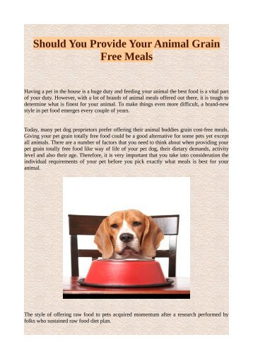 Should You Provide Your Animal Grain Free Meals