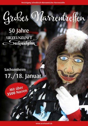 Großes Narrentreffen - Sachsenheim 17./18. Januar 2015