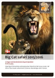 Big Cat Safari