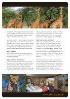 Big Cat Safari - Page 3