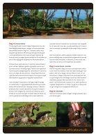 Big Cat Safari - Page 4