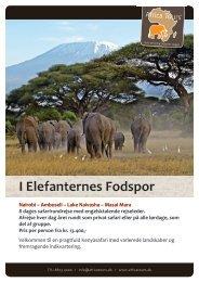 I Elefanternes Fodspor