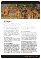 Kenya Cheetah Safari - Page 2
