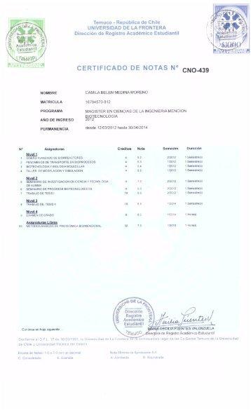 certificado notas magister.pdf