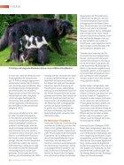 Verhaltenstherapie aus dem Futternapf? - Seite 3
