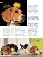 Verhaltenstherapie aus dem Futternapf? - Seite 5
