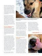 Verhaltenstherapie aus dem Futternapf? - Seite 6