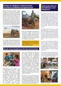 Geparde im Ausverkauf für den Heimtiermarkt - Seite 3