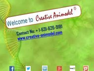 CELEBRATE THIS CHRISTMAS WITH GREAT DISCOUNT OFFER BY Creative Animodel