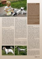 Kein Hund für Stubenhocker - Seite 2