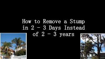 How to Remove a Stump in 2 - 3 Days Instead of 2 - 3 years