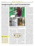 Kirchenzeitung für das Bistum Eichstätt - Seite 3
