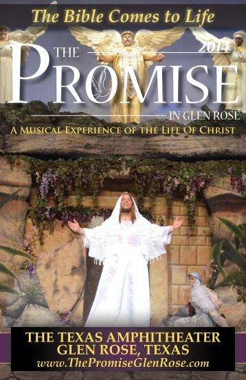 2014 Promise Playbill