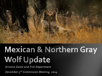 Arizona Game and Fish Department December 5 Commission Meeting, 2014