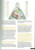 Home Republic Röportaj Mayıs 2014 - Page 4