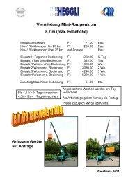 Vermietung Mini-Raupenkran 8,7 m