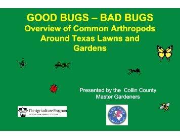 Good And Bad Bugs - (Collin County) Master Gardener Association