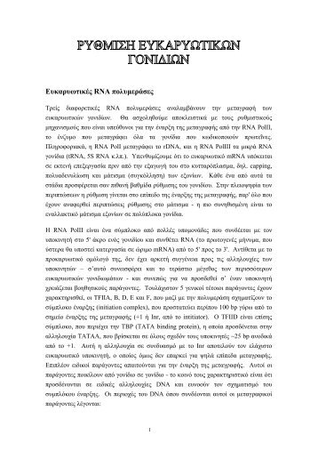 Ρύθμιση Γονιδιακής Έκφρασης 2