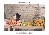 CALENDAR 2011 MAYAN PEEPSHOW - Alistair J Bray