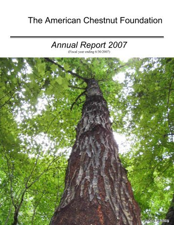 Annual Report 2007 - The American Chestnut Foundation
