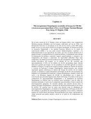Microorganismos fitopatógenos asociados al bosque de Olivillo