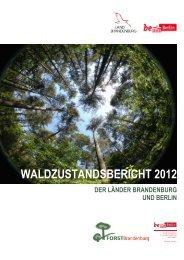 Waldzustandsbericht 2012 der Länder Brandenburg und Berlin